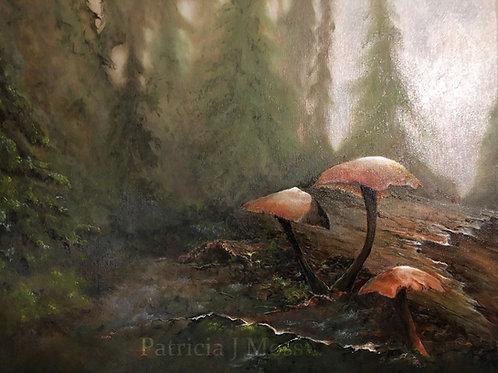 Unbridled Grace 20x16 Oil on canvas