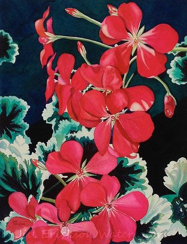 """Nancy's Geranium"" 14x11 Watercolor"