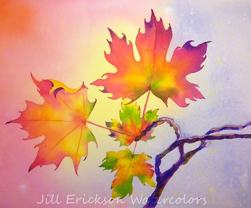 """Blazing Maples"" Watercolor 11x14 Original"