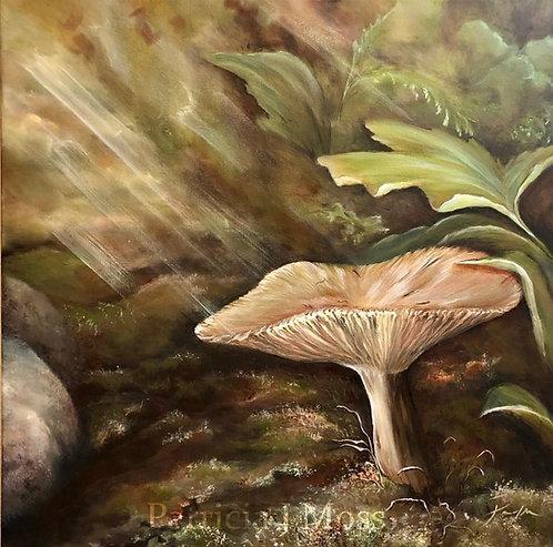 Lean in 20x20 Oil on canvas unframed
