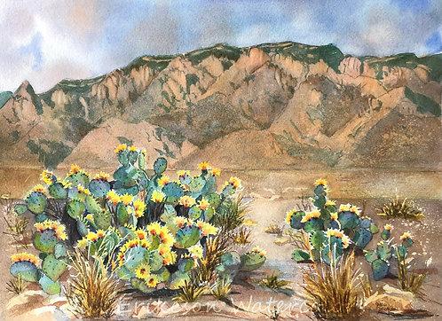 """ Sandia Mountains with pear cactus"" 11x14 Original"