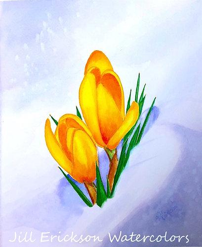 """Yellow crocus in the snow"" 11x9 Original"