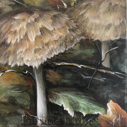 Margaret's Mushroom Artist Proof 8x8