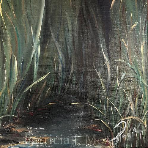 Hide Away 12x12 Oil on Canvas