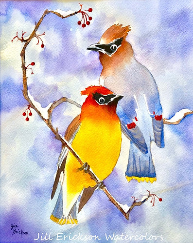"""Waxwings in Winter"" 11x9 Original"