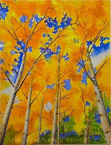 Jill Erickson Colorado Canopy Watercolor
