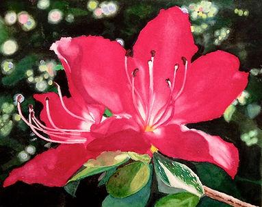 Jill Erickson Azalea Watercolor.jpeg