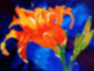 Jill Erickson Orange Lily Watercolor .jp