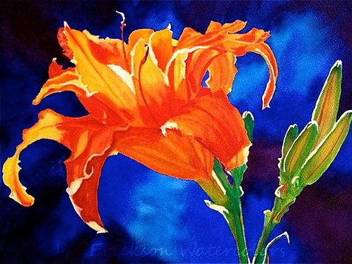 """Orange Lily"" Watercolor 11x14 Original"