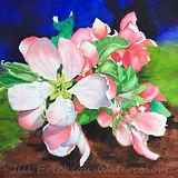 Jill Erickson Watercolors Backyard Apple