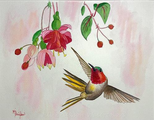 """Hummingbird with Fuchsia"" 8x10 Original"