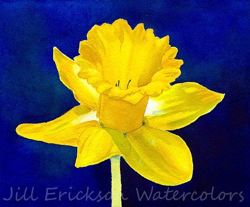 """Daffodil"" 9x11 Original"