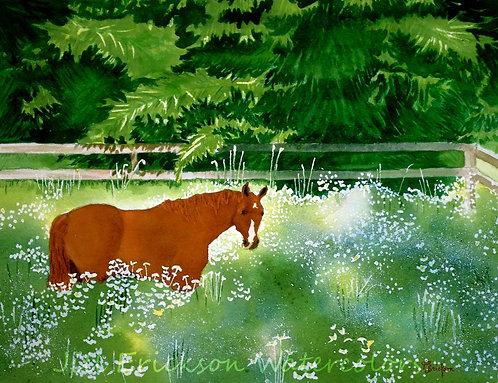 """Please don't eat the daisies"" Watercolor 11x14 Original"