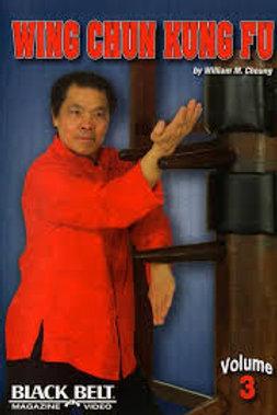Wing Chun Kung Fu 3