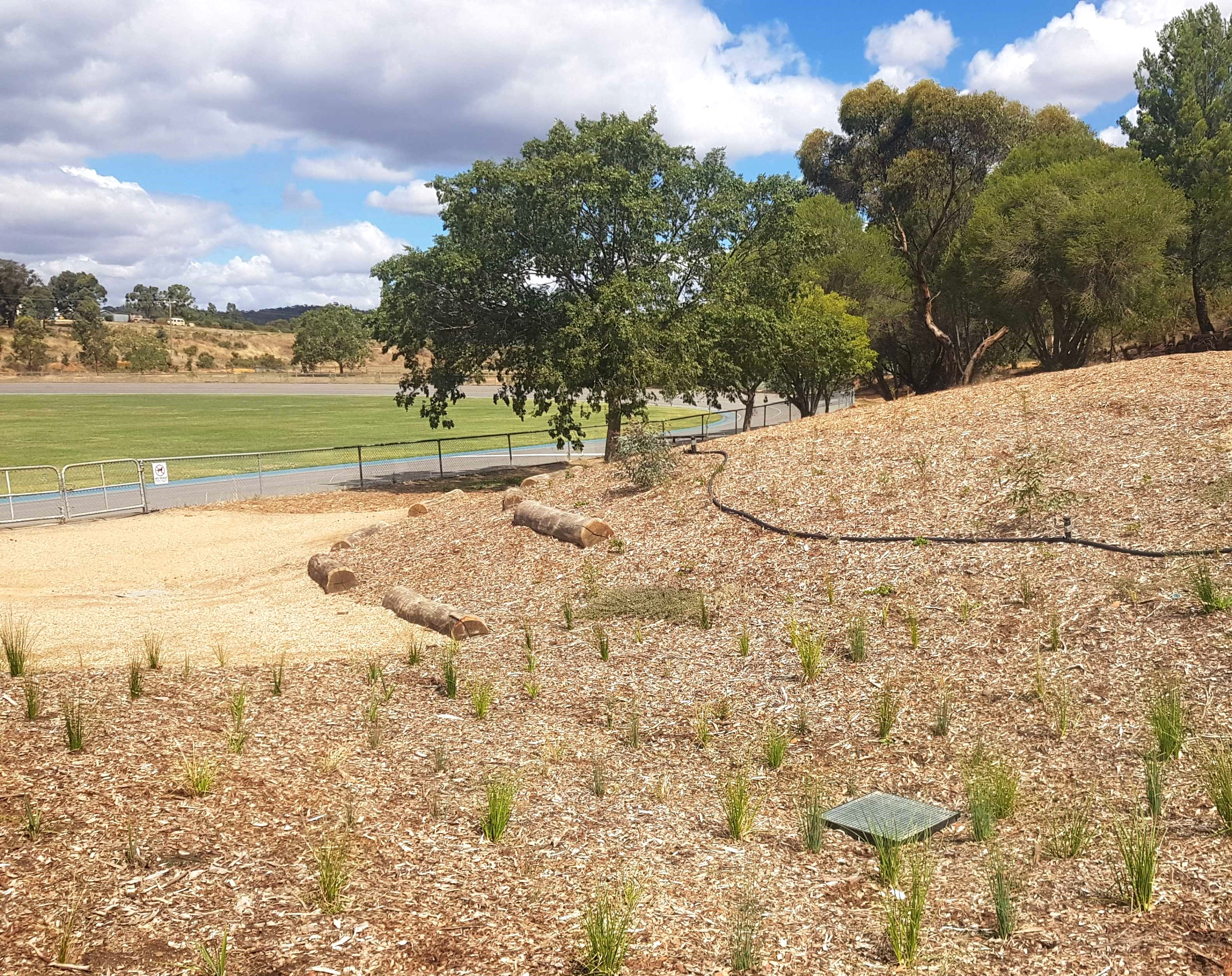 Wesley Hill Recreation Reserve