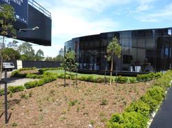 Melbourne Square, South Bank