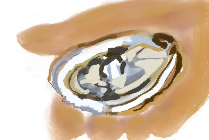 Debra-Torres-Oyster.jpg