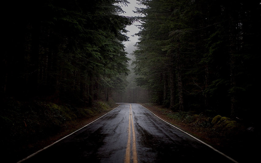 rainy-forest-road-nature-hd-wallpaper-19