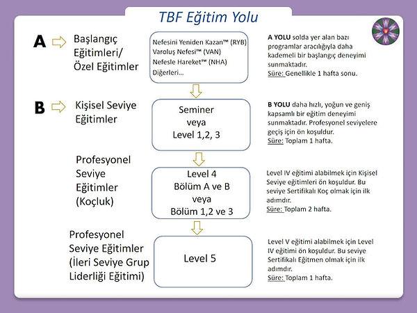 tbf-training-path-turkish.jpg