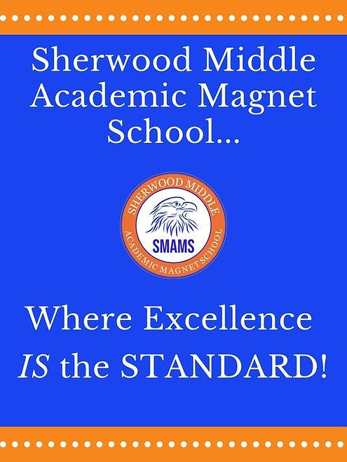 excellence banner (2).jpg