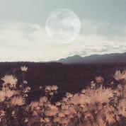 new-moon-.jpg