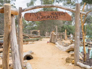 Fossil Hunter's Playground | Naracoorte Caves