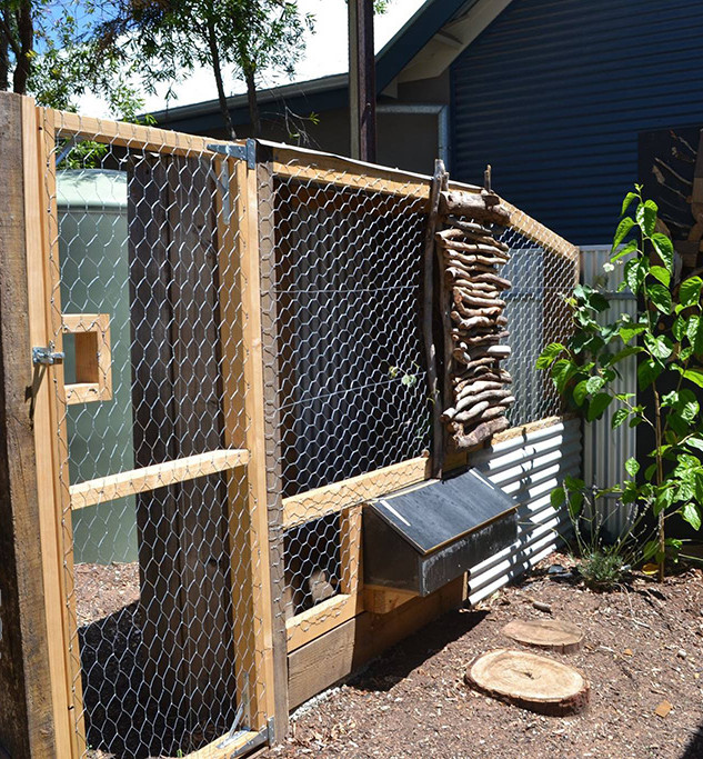 08_chicken_coup_and_nesting_boxes-1.jpg