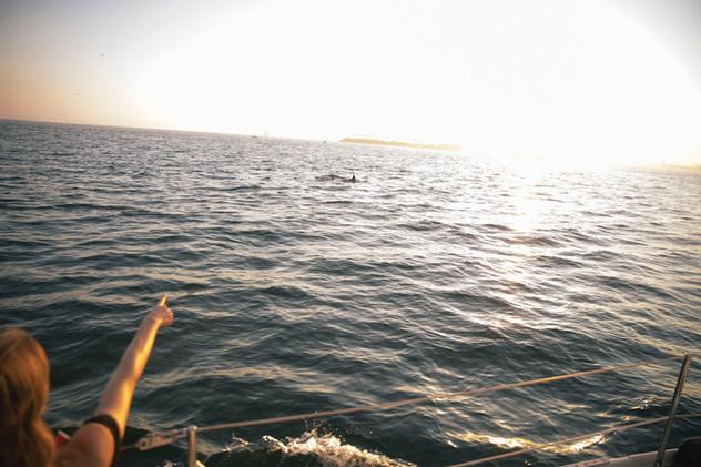 Sailing in Seal Beach - Boat Rental.jpeg