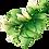 Thumbnail: Meow Charity Perfume - White Michelia