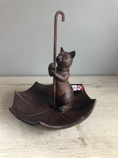 Chat marron parapluie