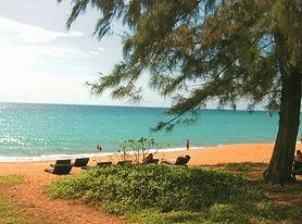 the-beach_edited.jpg