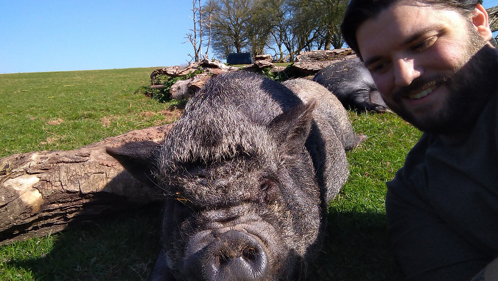 A selfie with a small black pig napping in the sun