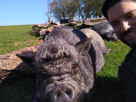 Dean Farm Again! Part 2
