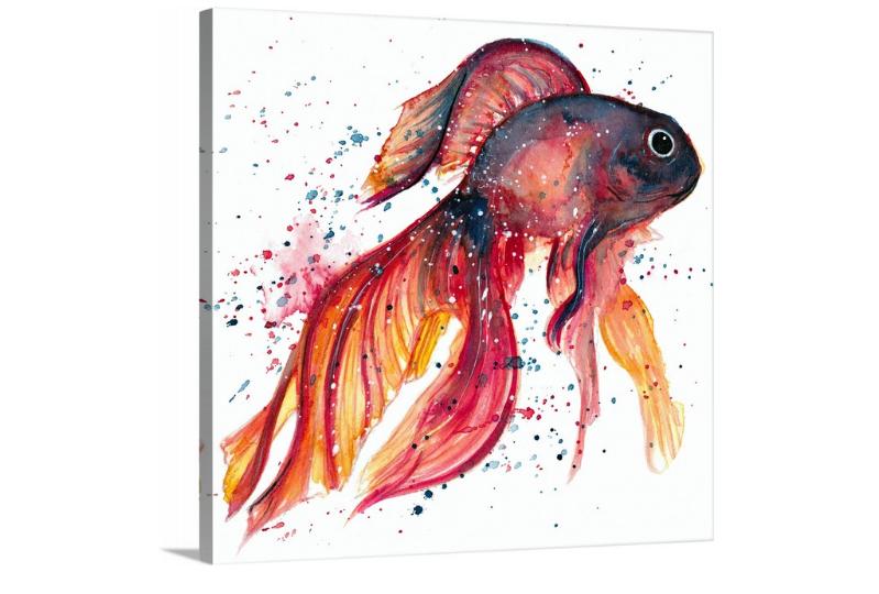 BETTA FISH #1