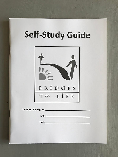 BTL Self-Study Guide - used with Restoring Peace for individual study