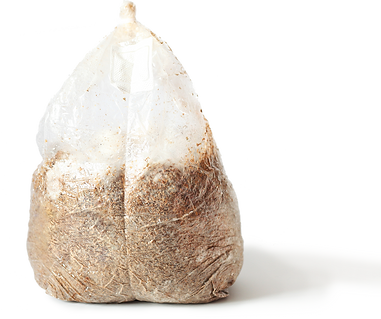sawdust-bag-1_edited.png