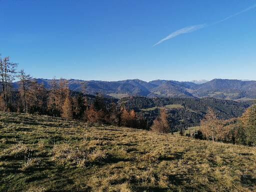 Hirschsteiner Berge