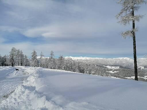 Blick Richtung Norden des Metnitztals