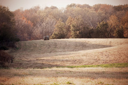 Midwest Deer Hunting Outfitters