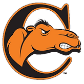 logo_-campbell-university-fighting-camel