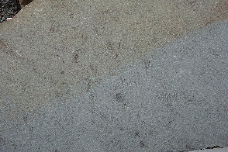 Sawn & Thermal Bluestone Flagstone 4