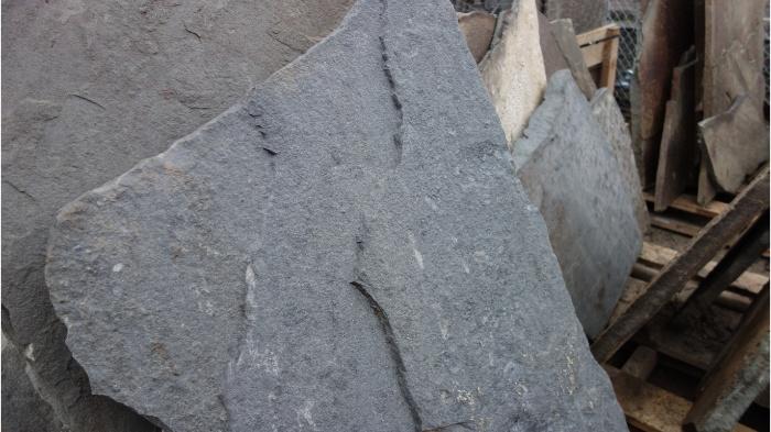 Variegated Bluestone Flagstone 16