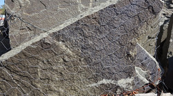 Variegated Bluestone Flagstone 9