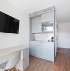 Wohnbereich mit Küche, TV, Schreibtisch, Schlafsofa und Schrank