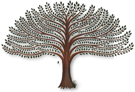 arbre_logo.png
