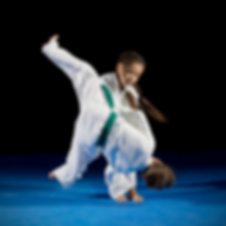 Martial Arts 840 x 840.png