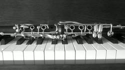 Clarinet lessons Sharon MA