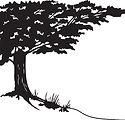 Tree0.jpg