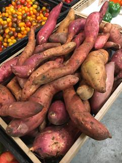 Garden-Sweet Potatoes