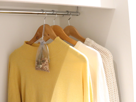 3 Ways To Get Rid Of Clothes Moths